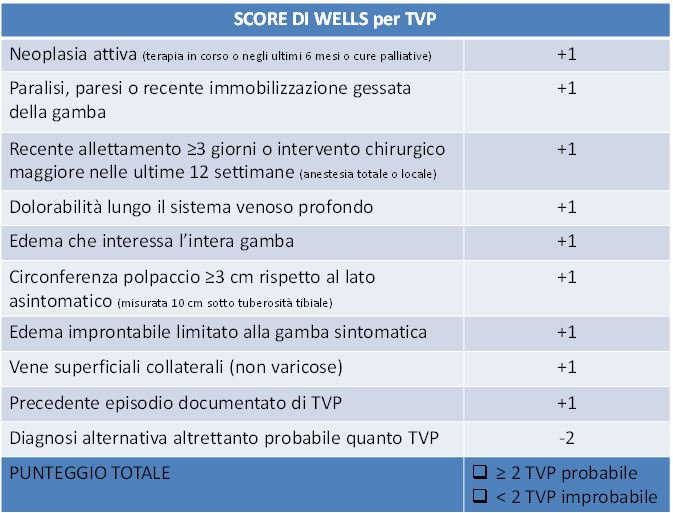 Calcolatori WELLS TVP